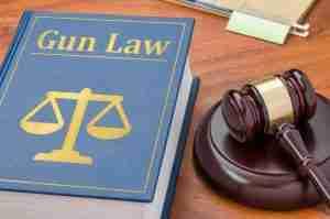 gun law and gavel